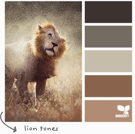 http://design-seeds.com/index.php/home/entry/lion-tones1