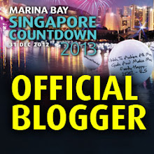 MarinaBay Countdown Official Blogger
