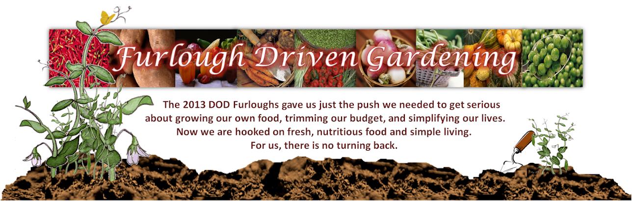 Furlough Driven Gardening