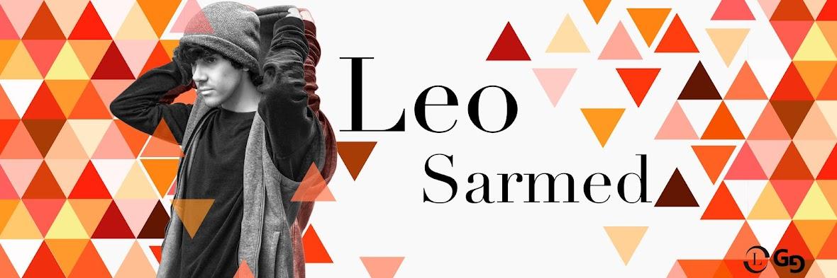 El blog de Leo