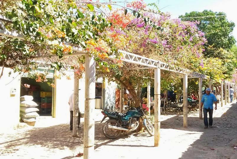 Travessa Carquejo onde estão Mercadinho São José de Zequinha e Comercial Costa de Elvira
