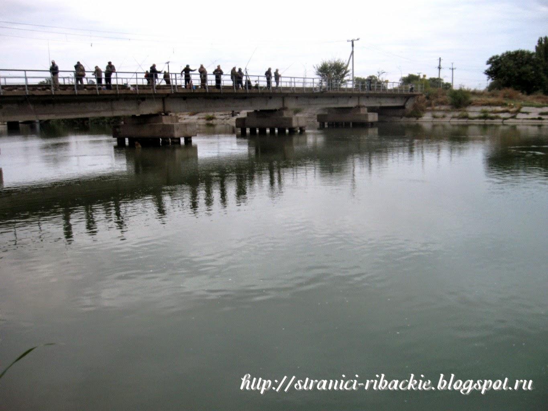 рыбалка на Волгодонском Оросительном канале