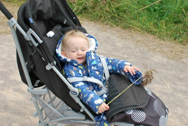 Baby in buggy with a water reed