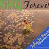 Ishq Ki Baarish Lyrics - Ishq Forever | Shreya Ghoshal, Javed Ali