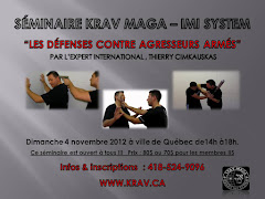 SMINAIRE / KRAV MAGA QUBEC / DIMANCHE 4 NOVEMBRE 2012 (fini)