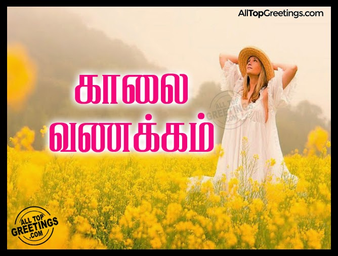 Funny Comments on Girls Photos on Facebook Facebook-tamil-comments-funny