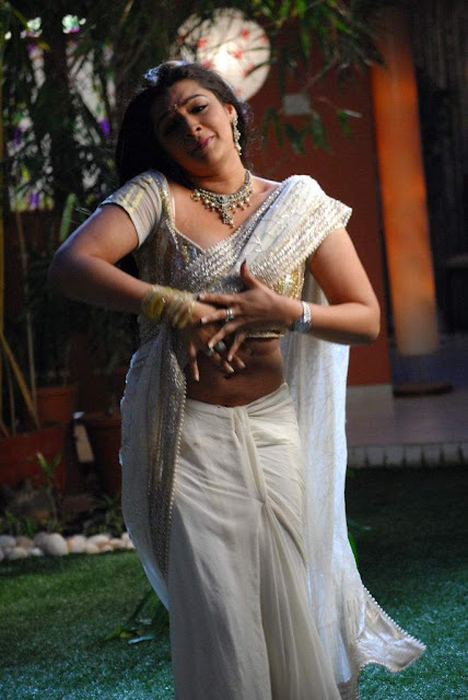 Actress Aarthi Agarwal Saree Below Navel Show Photos