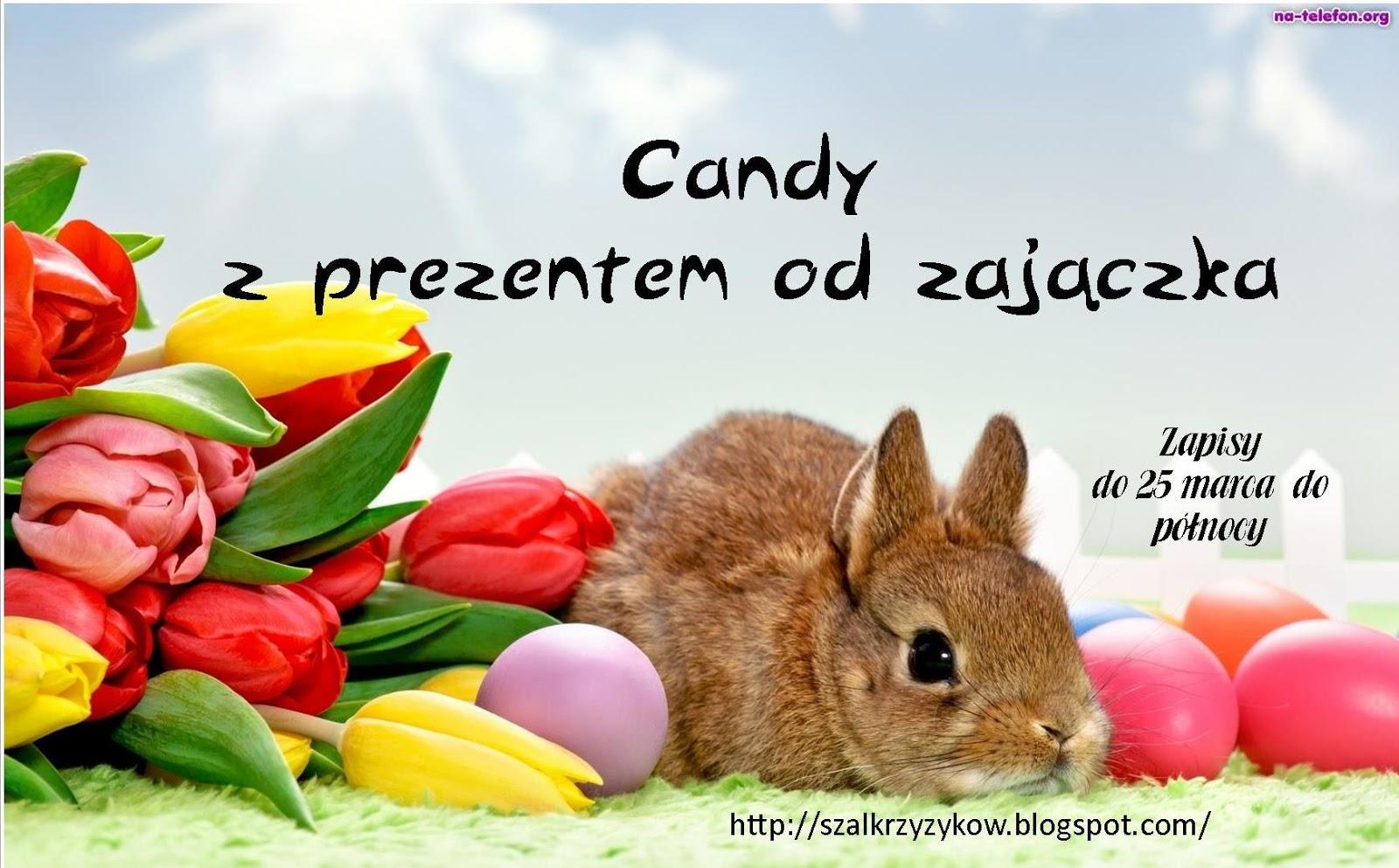 Candy u Katarzynki