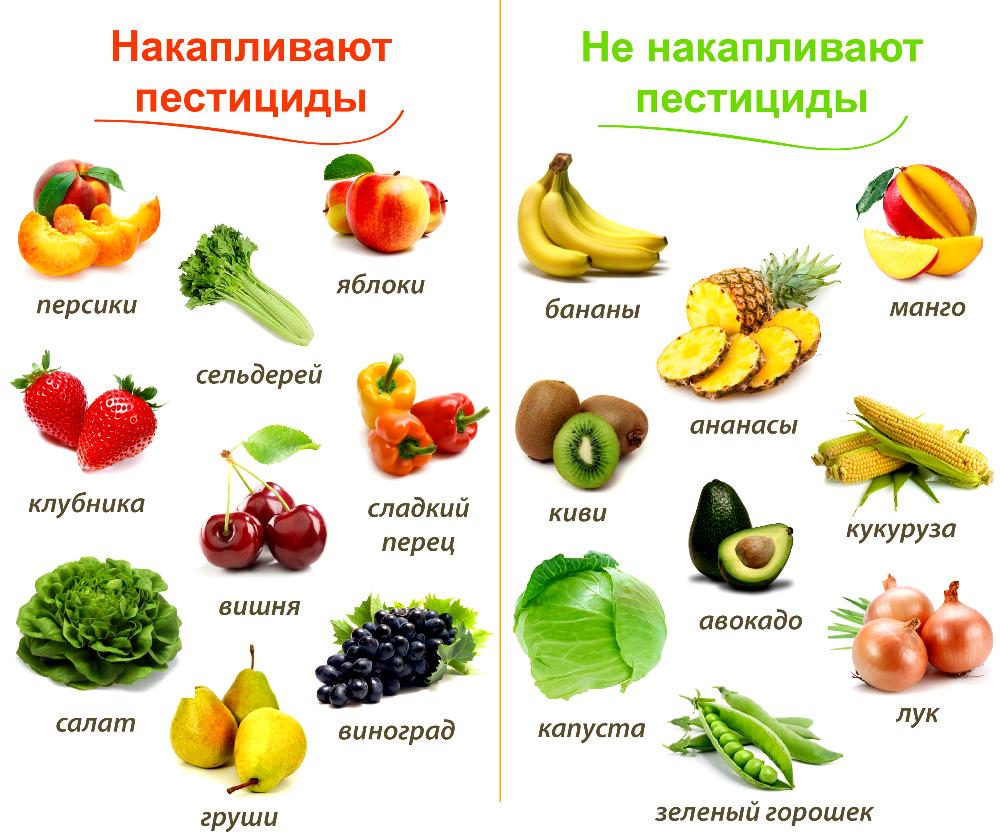 картинки фруктов и овощей по отдельности