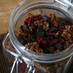 Šokoladinė granola su spanguolėmis