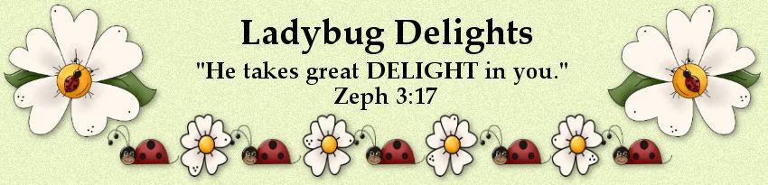 Ladybug Delights