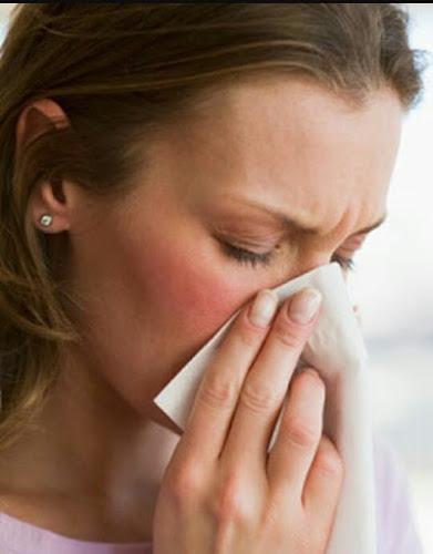 05 Alimentos que ajudam a combater a gripe