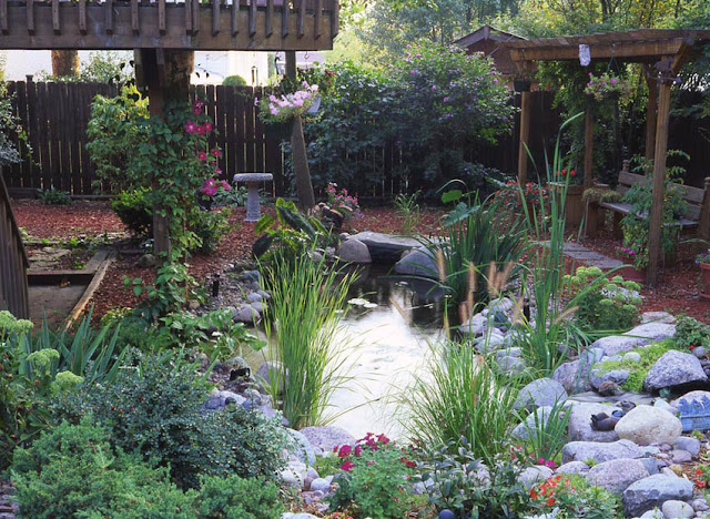 Small ponds pack a punch c e pontz sons landscape for Outdoor fish pond care