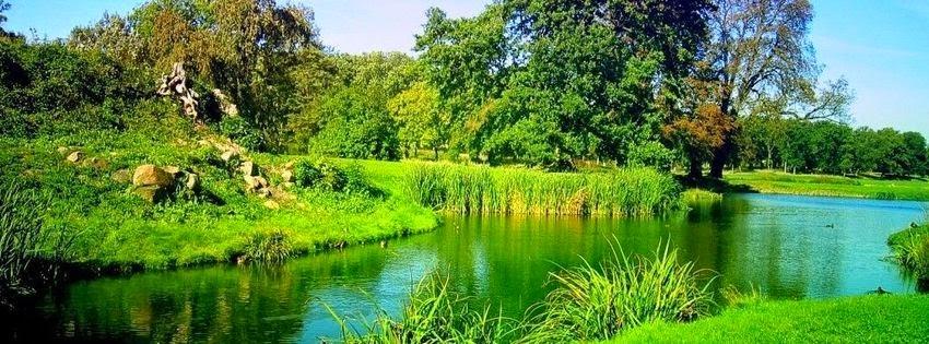 Image pour couverture facebook nature verte