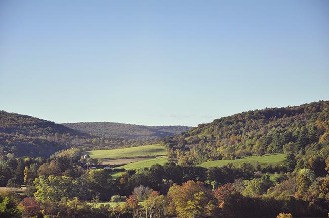 Oneonta, New York farm