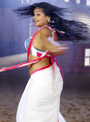 priyamani hot navel show in saree photos