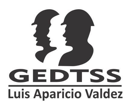 GEDTSS - Normas