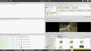 LinuxMint xmonad