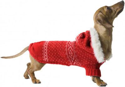 abrigo capucha perros Benetton