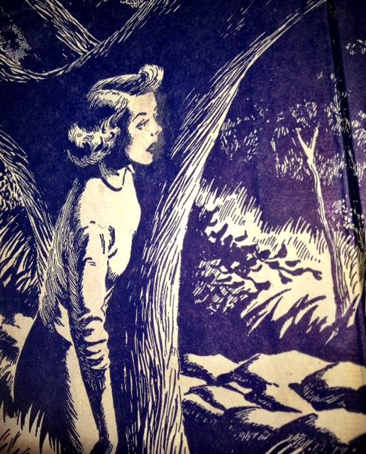 Nancy Drew Books - My real life Nancy Drew adventure…