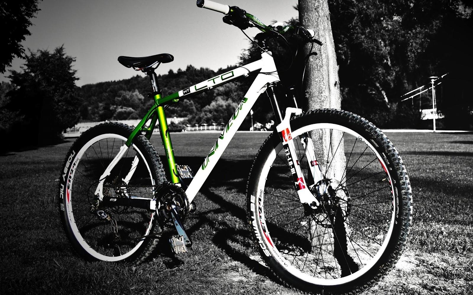 http://1.bp.blogspot.com/-gV2dV-WyFx4/UCUGxV83-HI/AAAAAAAACPg/rldKZ7lFfRY/s1600/Walls+Bike+HD+Wallpaper.jpg