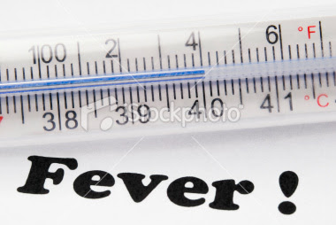 104 degree fever in adult