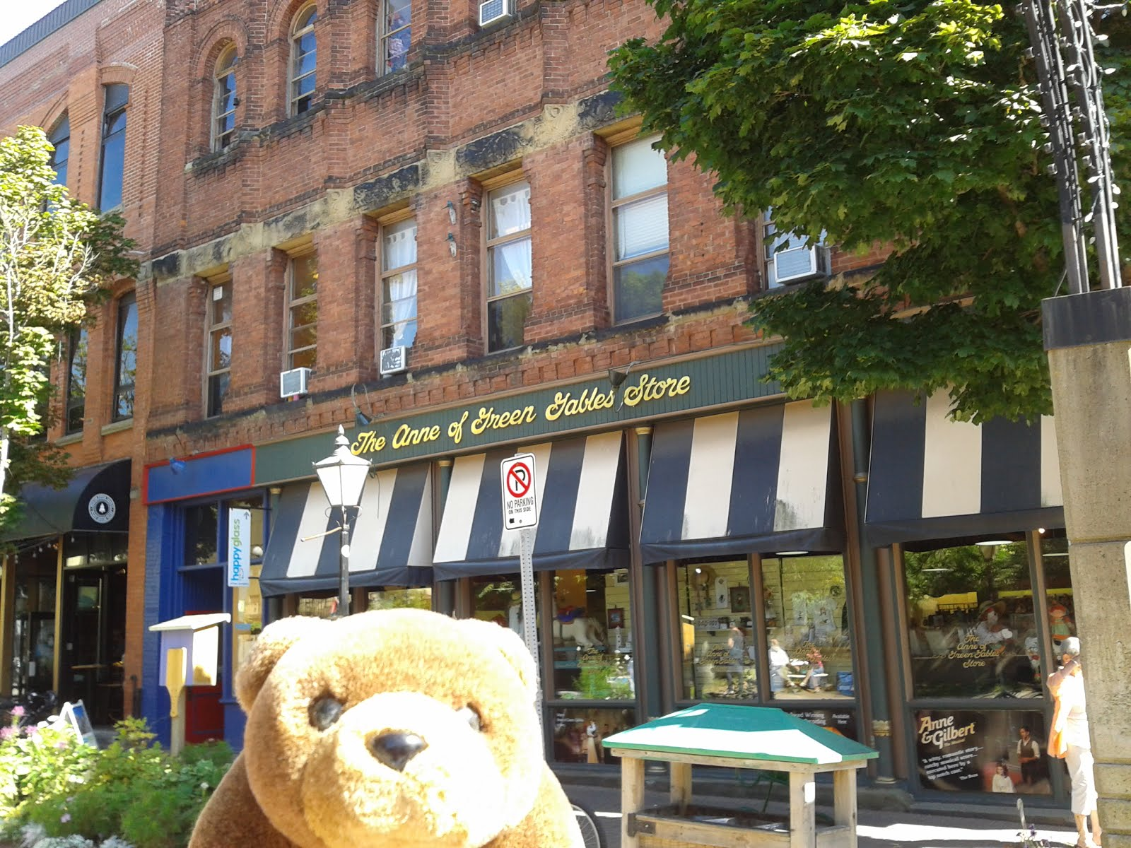 Teddy Bear in Charlottetown