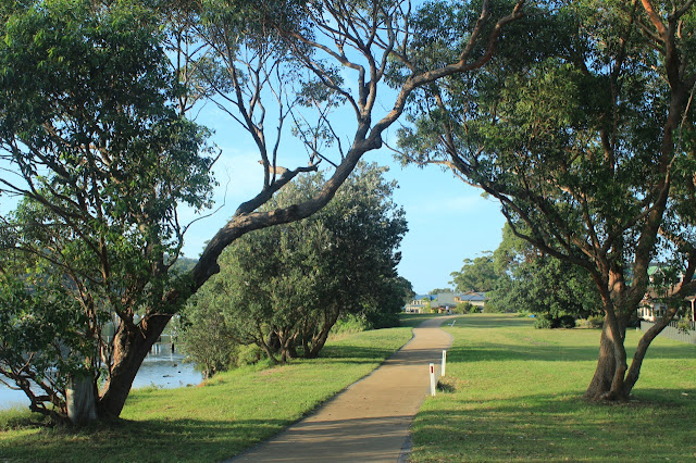 Path along Woy Woy foreshore