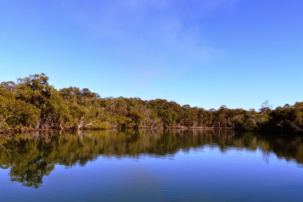 Mooloolah river national park