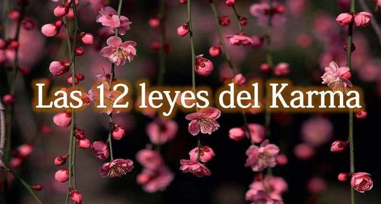 Abundancia amor y plenitud el karma como eliminar las - Como quitar la mala energia de una persona ...