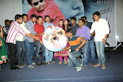 Aarya Chitra Movie Audio Release photos-thumbnail-18
