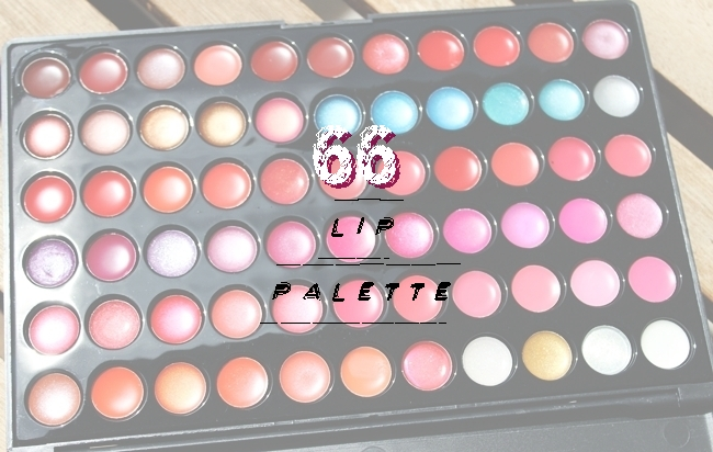66 lip palette: Lipstick + Lipgloss creamy and dreamy shades.Bh Cosmetics 66 Color Lip Palette dupe.Coastal Scents 66 Color Lip Palette dupe.66 paleta za usne.Najbolje mejkap palete.Best makeup palettes.
