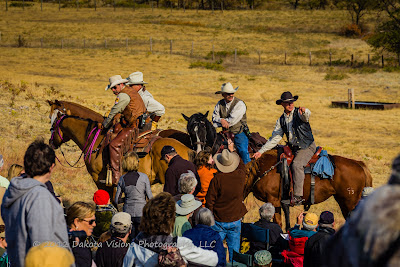 2012 Custer State Park Buffalo Roundup by Dakota Visions Photography LLC www.dakotavisions.com