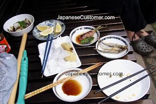 Japanese barbeque foods copyright peter hanami 2009