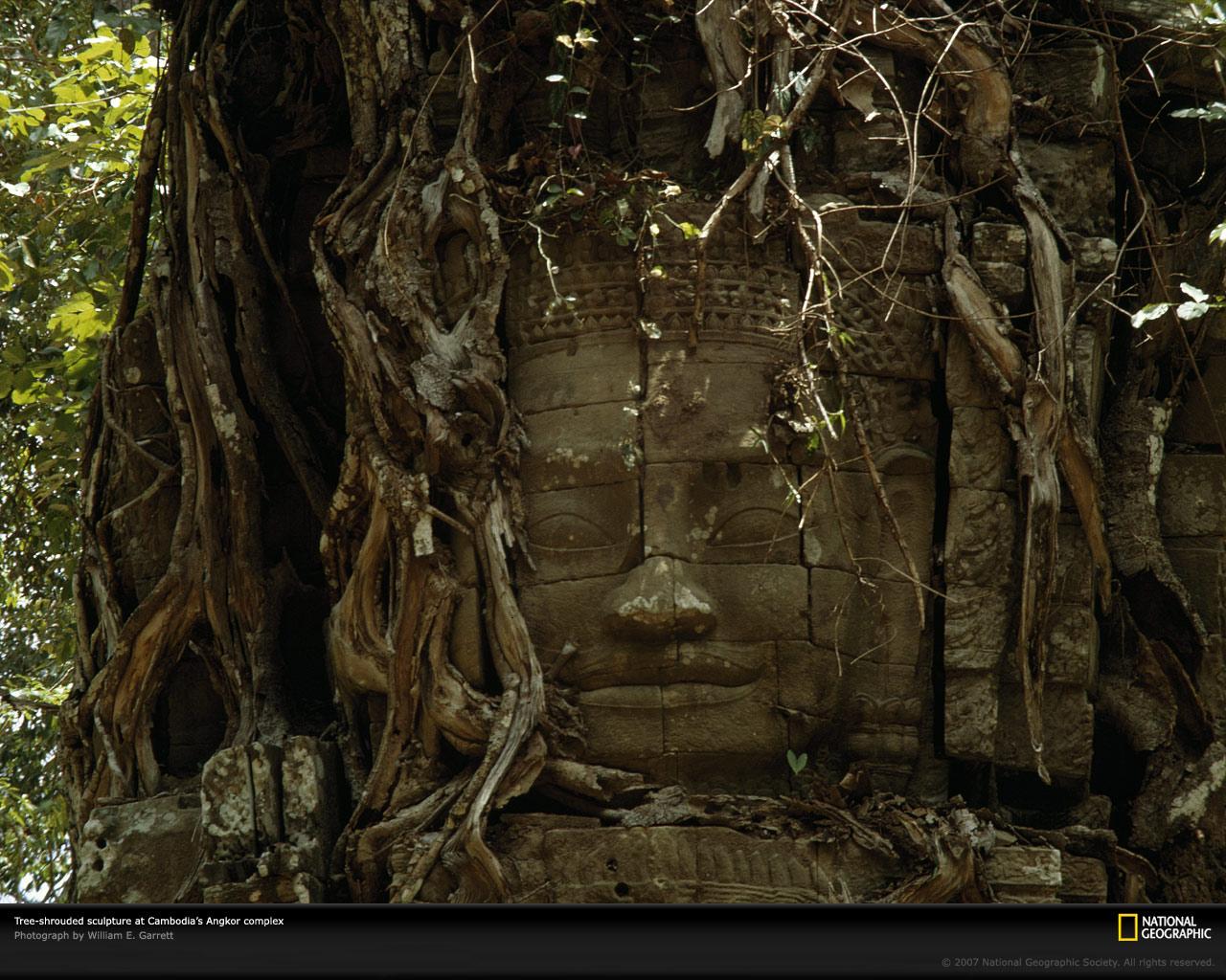 http://1.bp.blogspot.com/-gX7JhWLPQHs/UE3iE0N9zaI/AAAAAAAAI7k/1WylYG0oHEk/s1600/tree-shrouded-sculpture.jpg
