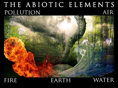 The nile river has many abiotic factors but clearly the most common is
