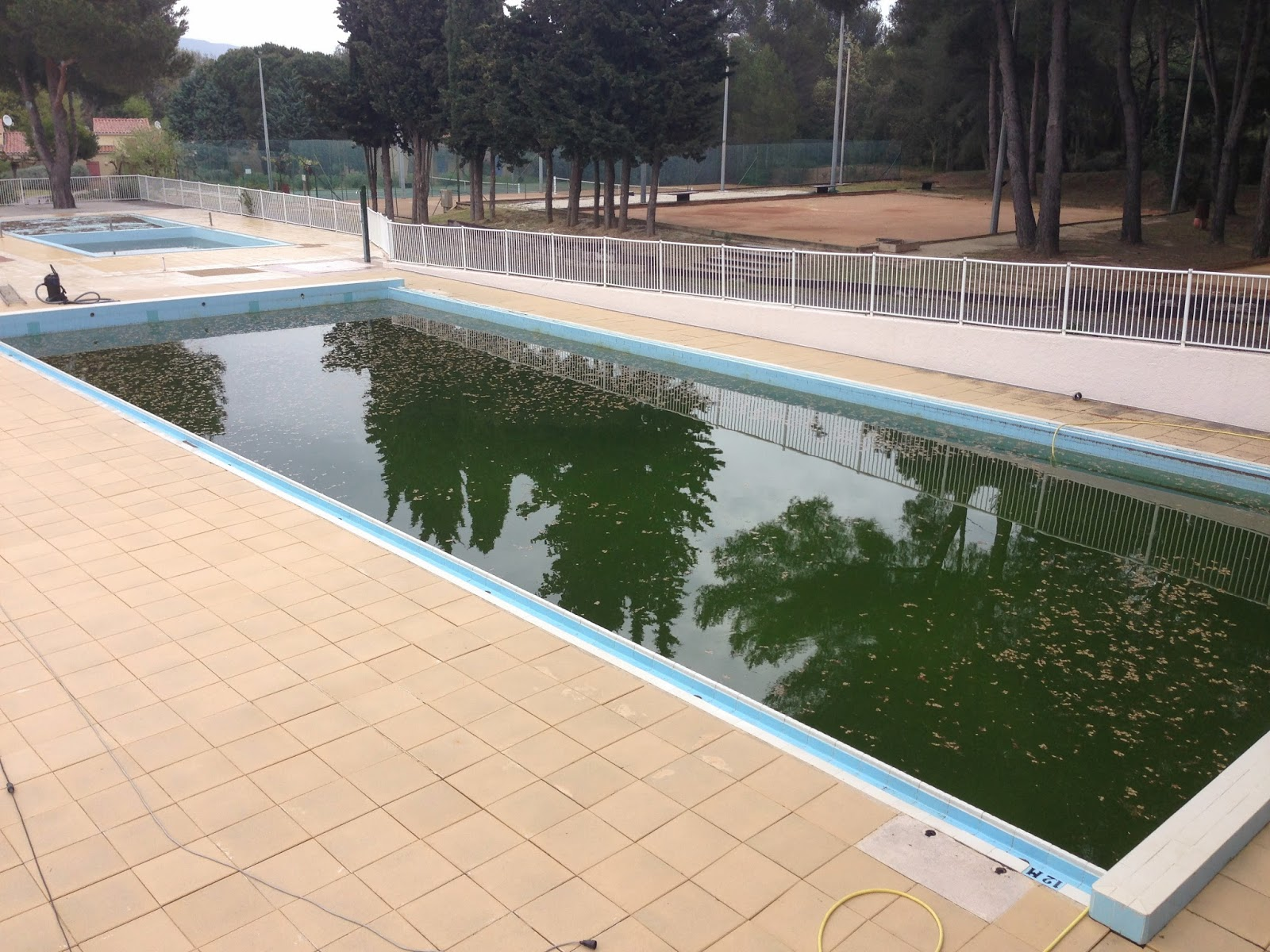 Village vacances touristra la manne ouverture de la for Algues rouges piscine