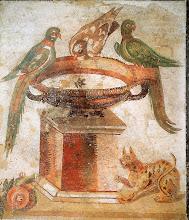 vasque aux oiseaux