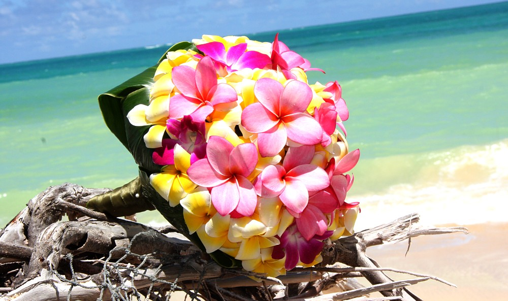 Flowers For Beach Wedding ESCAPE TO PARADISE Tropical Flower Bouquets