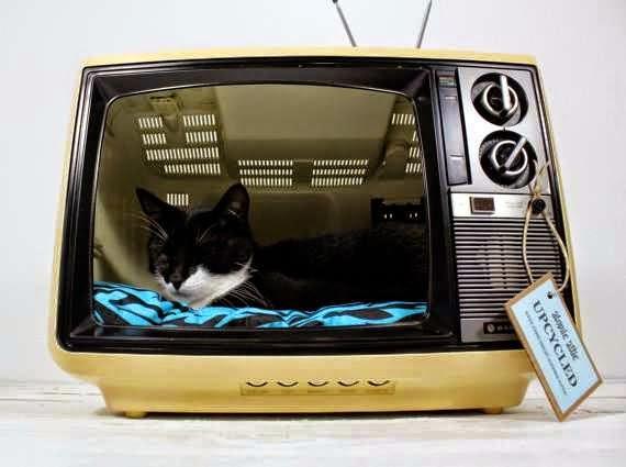 Lits pour les Chats avec des Matériaux Recyclés par Atomic Attic