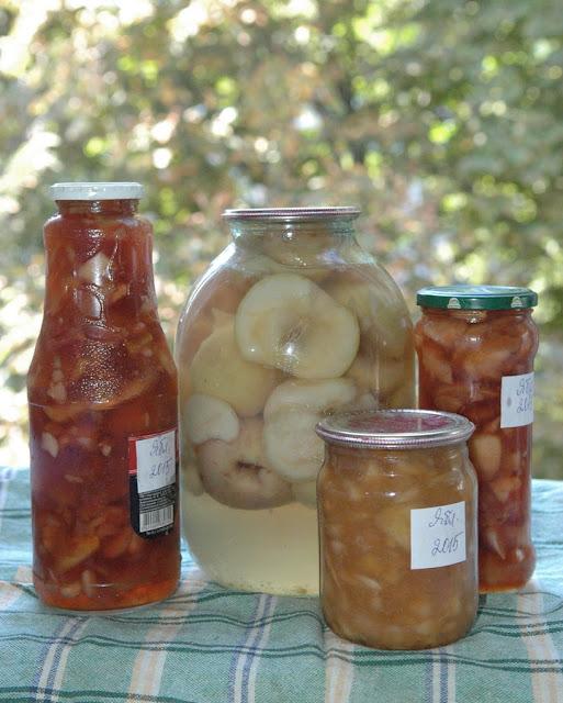 варенье и компот из яблок