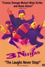 Watch 3 Ninjas 1992 Megavideo Movie Online