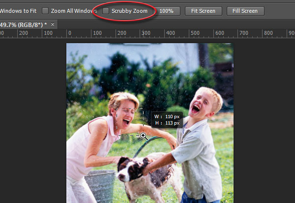What is doing scrubby zoom in photoshop cc designeasy zoom in by dragging marquee over part of image ccuart Image collections