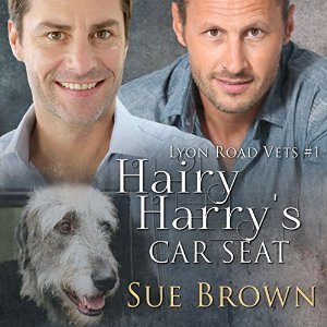 Hairy Harry's Car Seat Audiobook