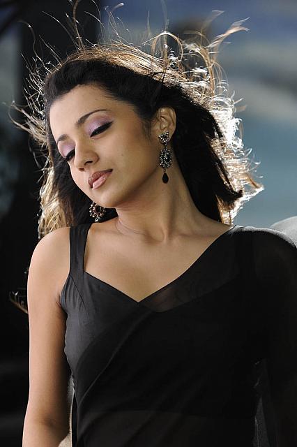 Cinema Actress Gallery Trisha In Black Saree Latest Hot High