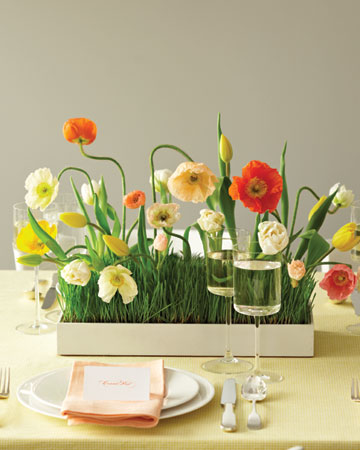 Want YOUR Guests To Be Sprung Over Your Spring Wedding