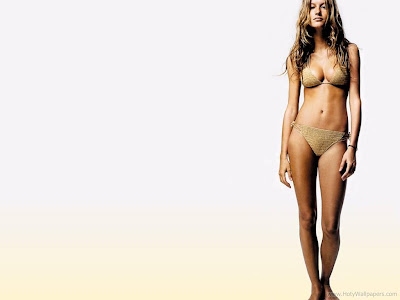 Celebrity on Brazilian Hollywood Actress Gisele Bundchen Wallpaper 1600x1200 03