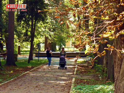 gherla parc toamna frunze alei