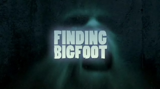 Finding Bigfoot Wallpaper it is Very Weird to See One's