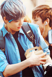 My Ultimate Bias;Zelo